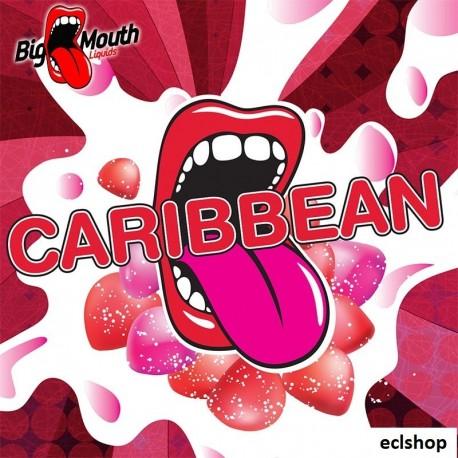 Big Mouth Karibo Caribbean Aroma - Big Mouth eclshop.dk
