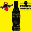 Fizzy - PINEAPPLE, STRAWBERRY, MANGO Aroma - Big Mouth