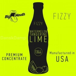 Fizzy - WATERMELON, TANGERINE, LIME Aroma - Big Mouth