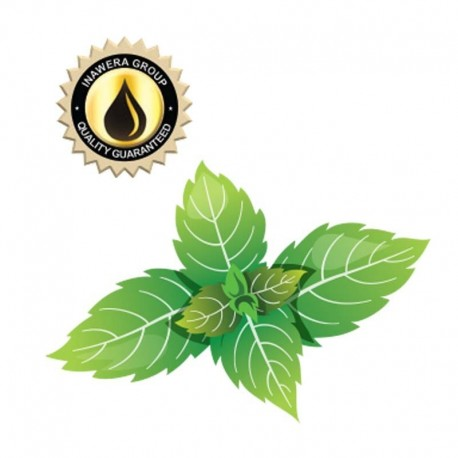 Inawera Concentrates Spearmint Aroma - Inawera eclshop.dk