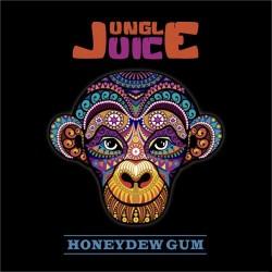 Riot Squad & Jungle Juice Honeydew Gum(med køling) by Jungle Juice - 30ml eclshop.dk