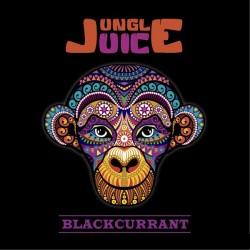 E-væske Blackcurrant(med køling) by Jungle Juice - 30ml eclshop.dk