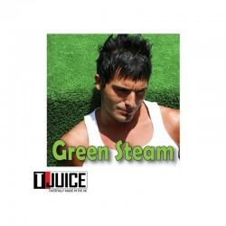AROMA T-Juice Aroma - Green Steam 10ML. eclshop.dk